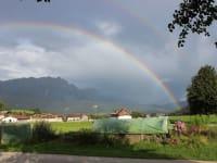 Regenbogen über dem Gerstboden