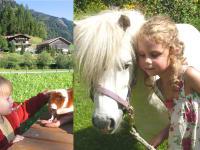 Urlaub am Voglbachhof
