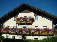 Balkonblumen im Sommer