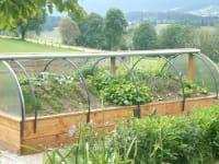 Ein Hügelbeet versorgt uns mit bestem Gemüse!