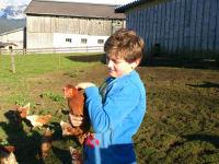 Bio-Freilandhühner