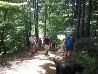 Wanderungen rund um St. Oswald