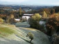 Blick auf den Lindenhof