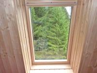 Ausblick Waldblickzimmer