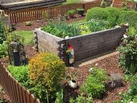Garten 2016