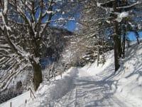 Schneespaziergang direkt vor dem Haus