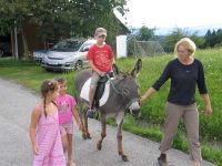 Eselreiten mit Moschka Ferien Erlebnis Südsteiermark
