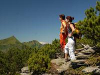 Wandern(c)TVBBergregionGrimming