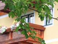 Ein Blick vom Balkon in den Garten