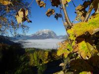 Herbst'ln