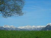 Totes Gebirge im Frühling