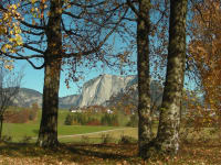 Trisselwand im Herbst