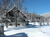 Winter am Hof