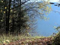 Herbst im Sarstein