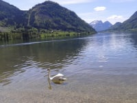 Grundlsee: DAS Steirische Meer