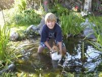 Biotop mit Hund
