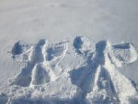 Schneespass garantiert!