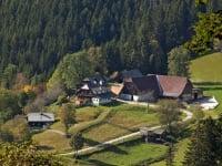 Urlaub am Bauernhof Fam. Rossegger, vlg. Schmiedhofer  Hochsteiermark