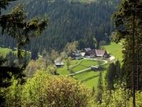 Urlaub am Bauernhof Rossegger, Hochsteiermark