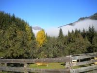 Tiefblauer Ausblick über den Obstgarten