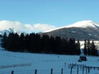 Winter_Langlaufen