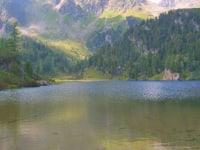 Bergsee im Sommer