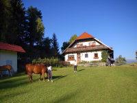 große Spielwiese hinter dem Haus
