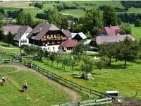 Blick auf den Reitplatz, Reitbauernhof Zechnerhof, St. Georgen