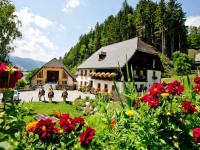Bauernhof Olachgut