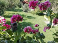 himmlischer Garten