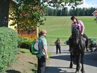 Harry Prünstner bewundert unsere Pferde