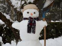 Schneemann - Winter im Almenland