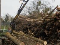 Wofgang bei der Bringung  von Hackgutholz