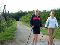 Walken durch die Obstgärten