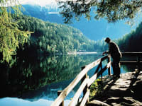 Piburgersee -  idyllischer Bergsee inmitten von Wäldern und Wiesen