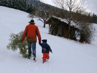 Rudl mit Rene beim Christbaumholen