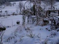 Schnee...............