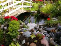 Tauch ein in den Garten der Sinne