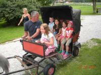 Kinder beim Ponykutsche fahren