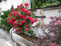 Dorfidylle mit Brunnen