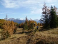Herbstwanderung Gleinser Mahdern