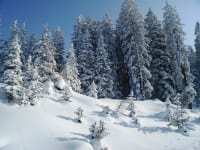 Winterlandschaft Mieders