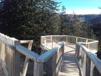 Gullenhütte In der Nähe Aussichtswarte 3