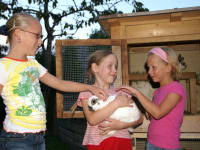 Our animals make our younger guests very happy