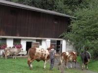 Bauernhof Glashütte