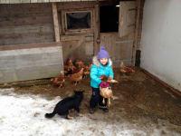 Magdalena  mit Hund und Huhn