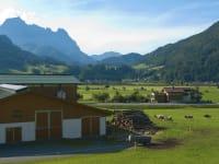 unser Stall  im Hintergrund die Felder und der Wilde Kaiser