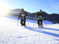 Schneeschuhwandern - TVB Pillerseetal