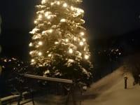 Unser beleuchteter Baum