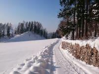 Bei einem Spaziergang die Winterlandschaft genießen